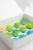Blog_Cupcakes_Box